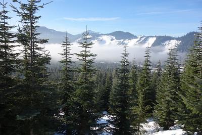 January Snowshoe