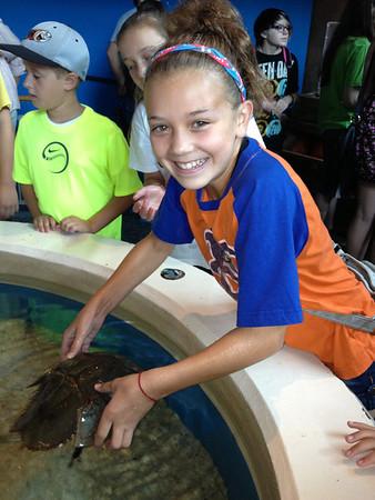 July 11 - Gatlinburg, Aquarium