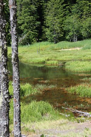 Travertine ponds