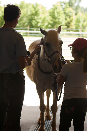 Horseback riding with the Girl Scouts