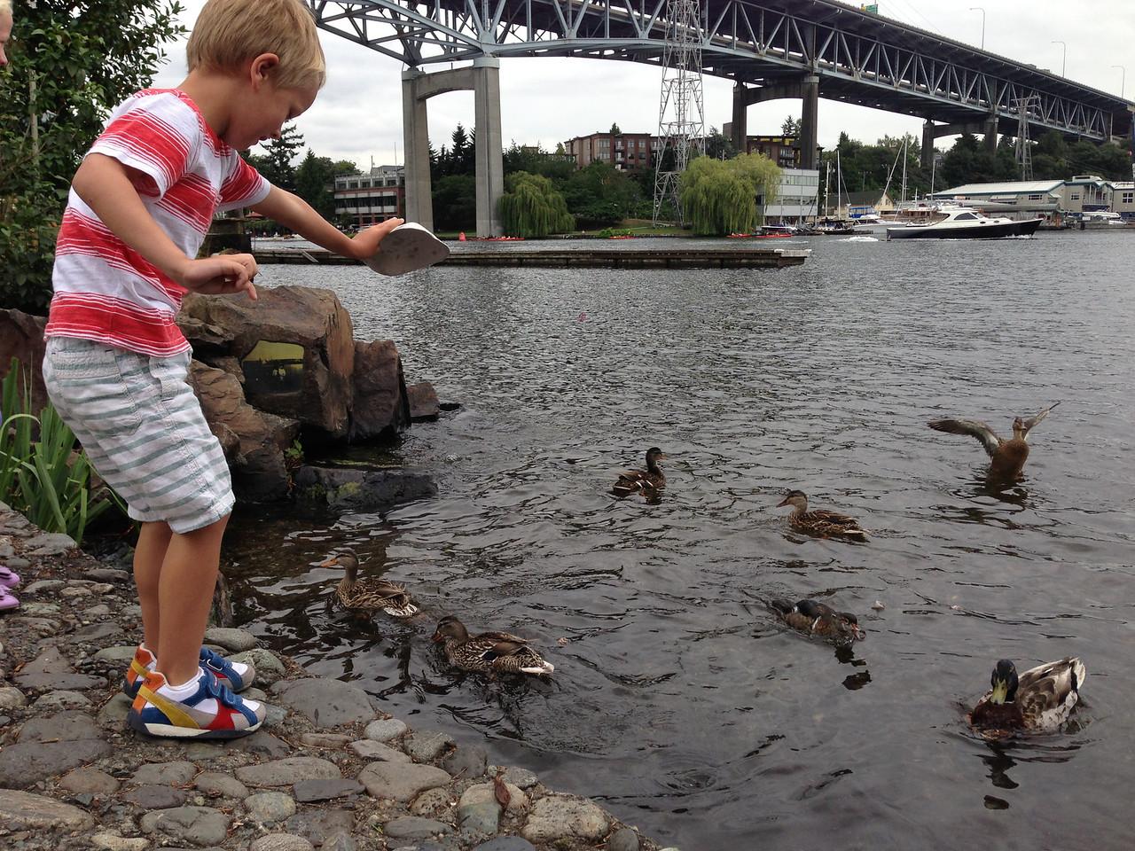 Feeding ducks the last of his fries in Lake Union