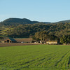 Salinas Valley farms