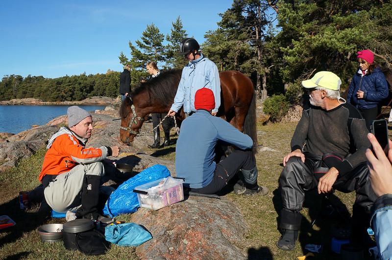 Lunchdax även för hästarna?