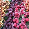 Colorful produce at the Ballard Farmer's Market
