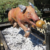 Pig Roast in Ballard