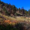 10-13-2013_Lory State Park_D50C4605