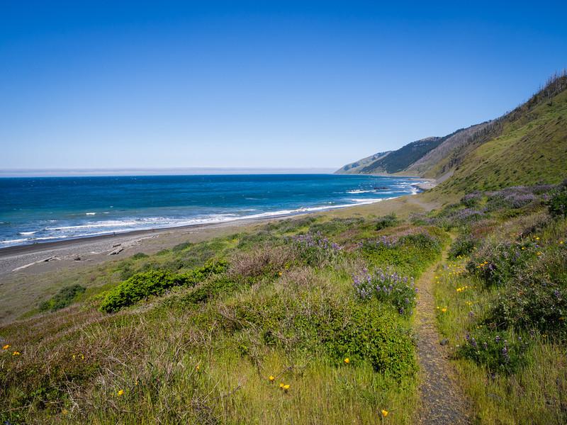 Path above the beach