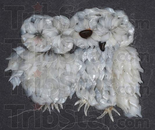 MET030113burton owls