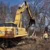 MET 0301213 42 TREE