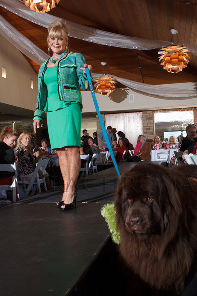 dames_dogs_13112150_1235