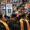 MET0509113IVY banner