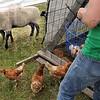 Farm detail