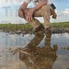 MET0508113planting hayhurst
