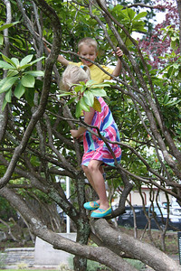 A quick break in Montesano on the way to the beach. Climbing in a very well established rhodedendron.