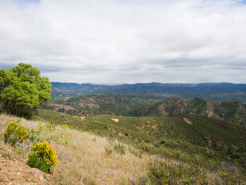 Looking east at the Orestimba Wilderness