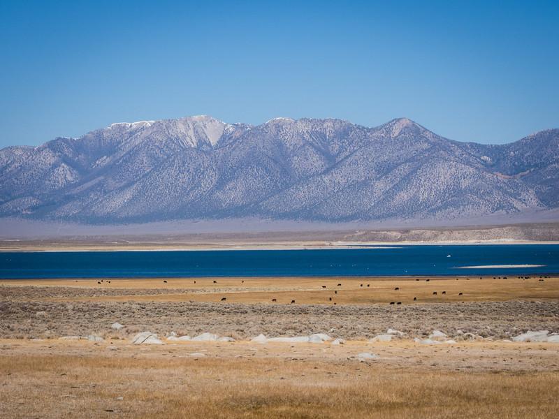 Lake Crowley and eastward
