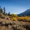 Leavitt Meadow