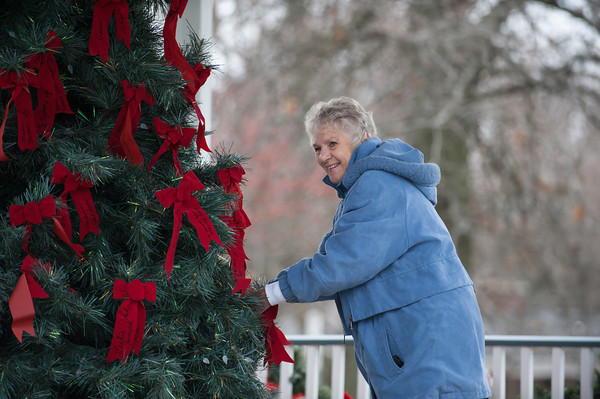 131121 Cat's Meow JOED VIERA/STAFF PHOTOGRAPHER Lockport, NY- Gail Pettit decorates a christmas tree with memorial ribbons at Childrens Memorial Park on Thursday Nov 21st, 2013.