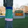 131119 Yarn Bombing VIERA/STAFF PHOTOGRAPHER Lockport, NY-Yarn lines the trees in front of Lockport High school on Tuesday Nov 19th, 2013.