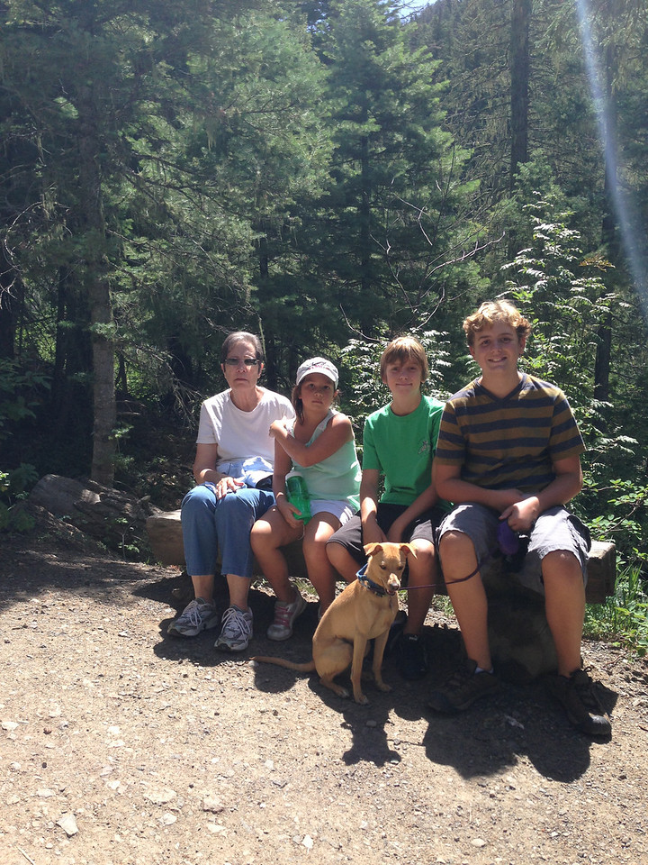 Treasure Falls trail in Pagosa Springs