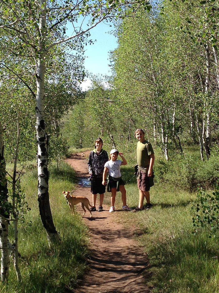 Piedra River Trail in Pagosa Springs
