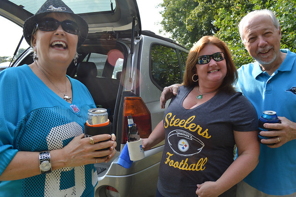 Panthers vs. Steelers 29 August 2013