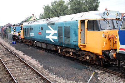 50019 'Ramillies' in faded large logo livery at Dereham Sidings MNR.