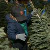 2013.12.06 The Guardsmen Tree Lot Kids Day
