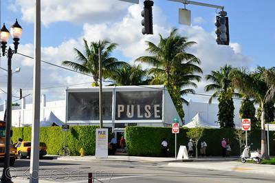 Pulse | 2013