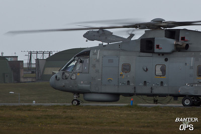 Merlins of The Royal Navy