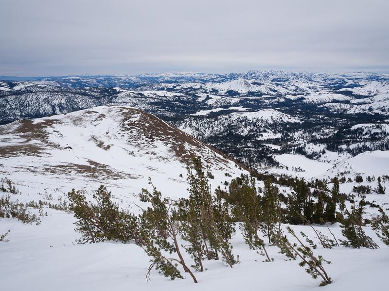 Northeast of Red Lake Peak