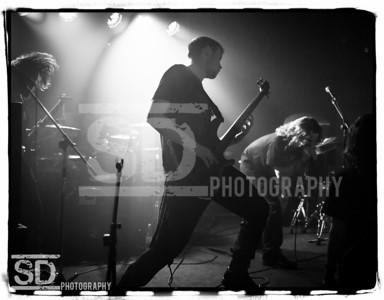 (C) SD Photography
