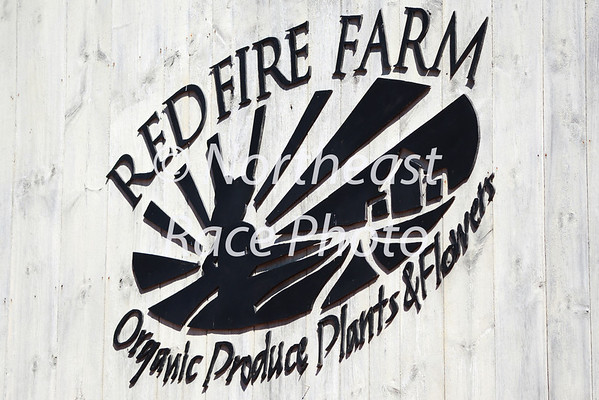 2013 Red Fire Farm Tomato Trot 5K
