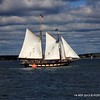 20130914-CT-Schooner-Festival-aboard-Mystic-and-David-Purcell-photo-082