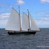 20130914-CT-Schooner-Festival-aboard-Mystic-and-David-Purcell-photo-062