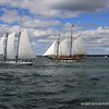 20130914-CT-Schooner-Festival-aboard-Mystic-and-David-Purcell-photo-046