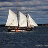 20130914-CT-Schooner-Festival-aboard-Mystic-and-David-Purcell-photo-081