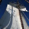 20130921-schooner-mystic-formosa-charter-037