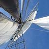 20130921-schooner-mystic-formosa-charter-042