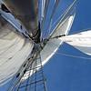 20130921-schooner-mystic-formosa-charter-043