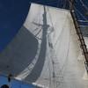 20130921-schooner-mystic-formosa-charter-034