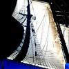 20130921-schooner-mystic-formosa-charter-035
