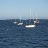 20130921-schooner-mystic-formosa-charter-067