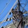 20130921-schooner-mystic-formosa-charter-026