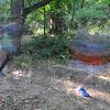 SPT083113RPHSXC blur
