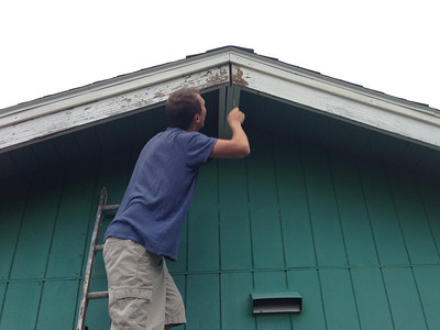 Peter pulls a small piece of trim off the south edge of the house and finds a small winged inhabitant - a bat!