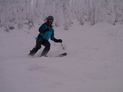 Schweitzer powder New Years 12/13