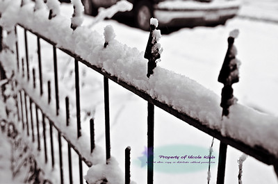 Snowstorm March 2013