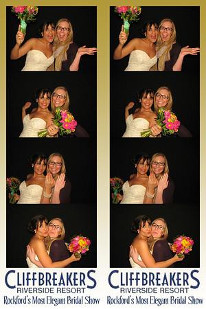 Rockford's Most Elegant Bridal Show March 3, 2013