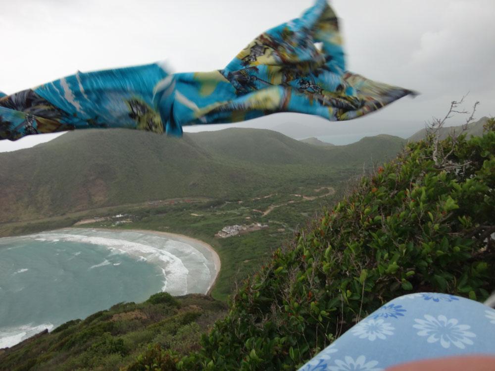 ironing blue shirt 5